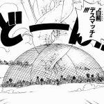 【ワンピース】白茨デスマッチ考察、トリカゴ似の範囲包囲網!