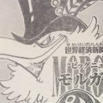 【ワンピース】鳥人現る?鳥っぽいキャラの謎について!