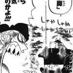【ワンピース】麒麟時雨(きりしぐれ)考察、前代未聞の降る斬撃!