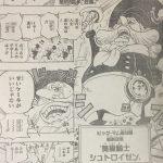 【ワンピース】総料理長シュトロイゼンとかナス男とかそういう系で気になってるキャラ6人考察!