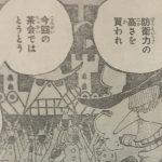 【ワンピース】戦闘員とチェスの駒、残るポーン・クイーン・キングが気になるところ!