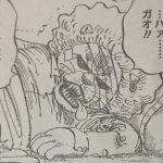 【ワンピース】858話「会議」ネタバレ確定感想&考察!