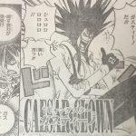 【ワンピース】ガスティーノの宿り木、ギャングスターの生き残る術について!