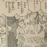 【ワンピース】スムージーの搾り取る能力の残虐性について!