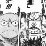 【ワンピース】鉄塊・剛の強さ考察、ブルーノ最大の判断ミス!