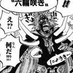 【ワンピース】六輪咲き(セイスフルール)スラップ考察、ロビン怒りの平手打ち!