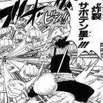 【ワンピース】炸裂サボテン星考察、破裂・炸裂する針の嵐!