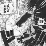 【ワンピース】ギガント風船の強さ考察、センゴクの一撃をも受け止めるパワー!