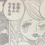 【ワンピース】デレデレサンジ考察4選、全ての港にオンナがいる的なアレについて!