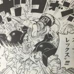 【ワンピース】ニャンニャン・スープレックス&ベビーバスター考察、セニョール・ピンクのパワープレイ!