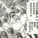 【ワンピース】ジャケジャケの実の強さ&ファンク兄弟の技考察、または覚醒の有無について!