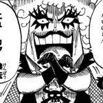 【ワンピース】夢打撃処理拳(ムダゲショリケン)考察、ニューカマー拳法44のエステ奥義!