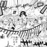 【ワンピース】オリオリの実の強さとヒナの技考察、または覚醒の有無について!
