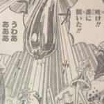 【ワンピース】流動的な悪魔の実4選考察、ちょっと粘性で使い方次第では…!