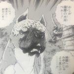 【銀牙・流れ星銀】ベムの強さと人物像考察、醜き顔の薩摩の大将!