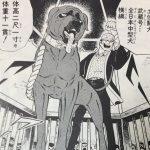 【銀牙・流れ星銀】武蔵の強さと人物像考察、闘犬中型横綱として!