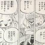 【ワンピース】チユチユの強さ&マンシェリー姫の技考察、または覚醒の有無について!