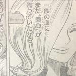 【ワンピース】女性の特別な笑顔4選考察、またはレイジュの救いとかについて!