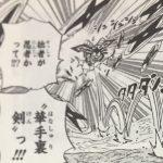 【ワンピース】華手裏剣考察、あと過去に登場した他の手裏剣について!