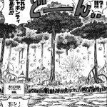 【土地考察】シャボンディ諸島の背景考察、シャボン舞う重要拠点!