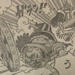 【ワンピース】ライディーンとハイルディンのディンディンコンビについて思うこと!