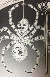 や きめ 蜘蛛 ば つの い