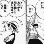 【ワンピース】力で奪え、情けは無用!海賊らしいルフィの行動4選考察!