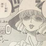 【ワンピース】美しき諜報員・サイファーポールのステューシー&カリファについて!
