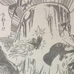 【ワンピース】キャンディウォールの強さ考察、強固な飴で生み出す防壁!