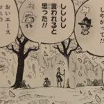 【ワンピース】生まれる前と死んだあと、死と生の境界に咲く象徴の桜について!