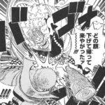 【ワンピース】ダダンの本名はダ・D・アンだと判明!(大嘘)
