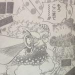 【ワンピース】量産型ナポレオン仮説&オプション機能、教えて貰ったアレコレについて!