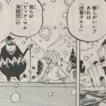【ワンピース】覚醒が怪しい悪魔の実についての再考察・再解釈!