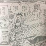 【ワンピース】880話「退路0」ネタバレ確定感想&考察!