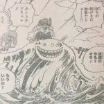 【ワンピース】アメウミウシの謎と脅威、その正体を追ってみたい!