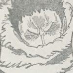 【ワンピース】ソルソル覚醒問題、カタクリの「勿論」が気にかかる…みたいな話!