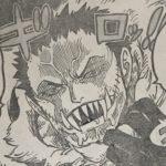 【ワンピース】将星カタクリの真の姿、魚人orミンク族の影について!