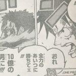 【ワンピース】違和感の正体、ルフィの戦闘意欲に漂うものついて思うこと!