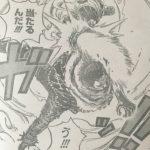 【ワンピース】884話「誰だ」ネタバレ確定感想&考察!