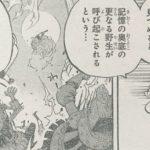 【ワンピース】スーロン(月の獅子)についての補足、新たに判明したいくつかのことについて!