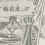 【ワンピース】梅花皮(かいらぎ)の強さ考察、四皇の斬撃をも防いだガード!