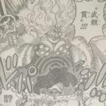 【ワンピース】波動とコアラ、または今回の武頼貫の威力について!