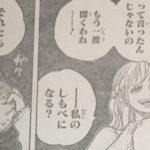 【ワンピース】泥棒猫ナミと戦利品、ゼウスの命運について思うこと!