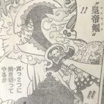 【ワンピース】皇帝剣(コニャック)&破々刃(ははば)の強さ考察、ナポレオンの変化した姿について思うこと!