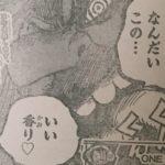 【ワンピース】892話嗅覚×甘い香り×妹2人の立ち回りについて!