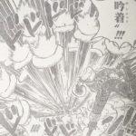 【ワンピース】餅吟着(もちぎんちゃく)考察、またはカタクリの覇王色について!