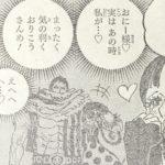 【ワンピース】893話「C家36女フランペ」ネタバレ確定感想&考察!