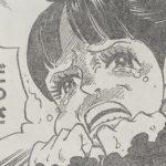 【ワンピース】手の平を返すフランペ、勝手に憧れ&勝手に幻滅する精神について!