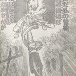 【ドクターストーン】氷河&ホムラの人物像考察、司帝国からの2人の刺客!