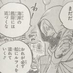 【ワンピース】待機するサニー号&追撃軍への対応、または「やや遅刻」の効果について!